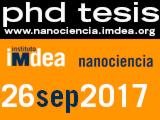 PhD Thesis Felipe Viela